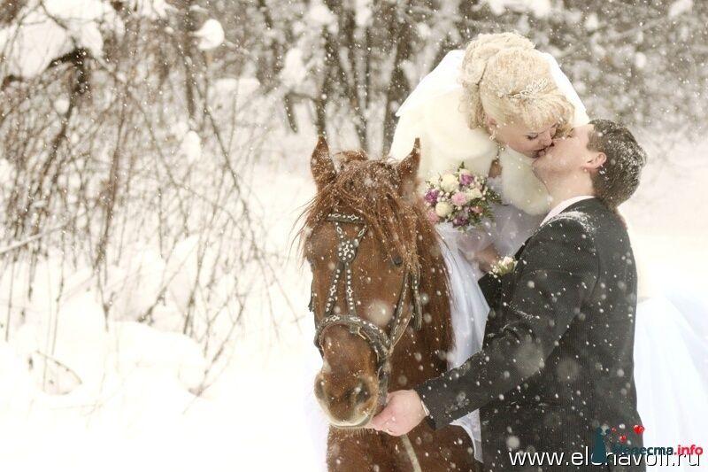 Фото 122717 в коллекции Свадебная фотосъёмка (Барнаул, Заринск) - Профессиональный свадебный фотограф Елена Вольф (Барнаул)