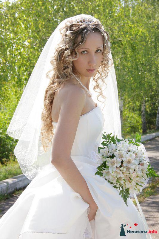 Фото 123156 в коллекции Мои фотографии - Невеста01