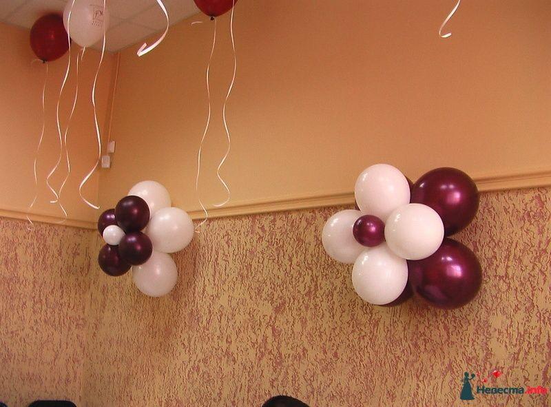 """Фото 123685 в коллекции Оформление  воздушными шарами - Агентство """"Баттерфляй"""" оформление"""