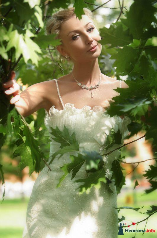 Фото 127835 в коллекции Мои фотографии - Studio-Wedding - фотограф