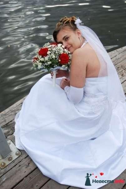 свадебный фотограф - фото 126101 Фото, видео услуги