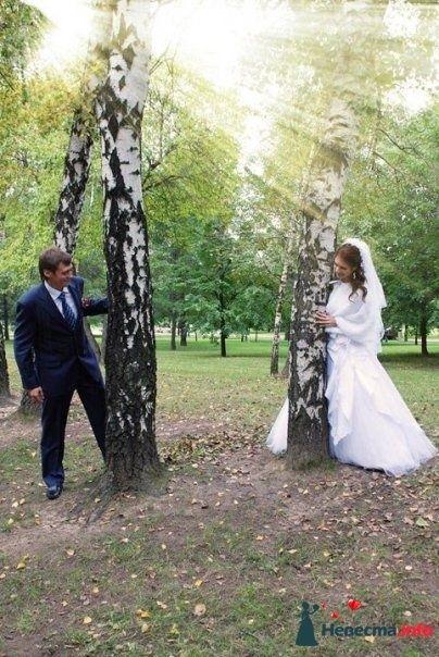 Фото 126112 в коллекции свадьба - Фото, видео услуги