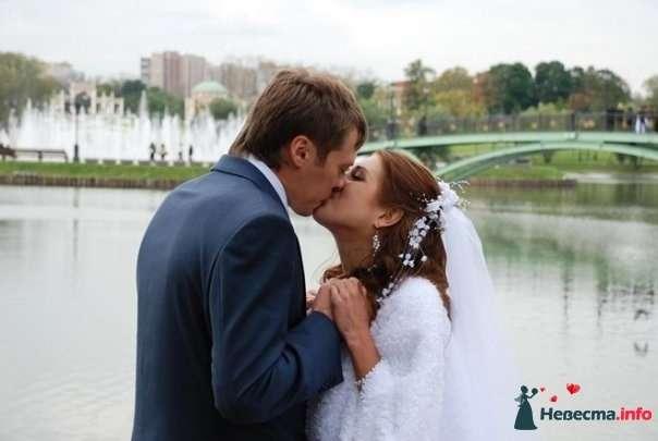 Фото 126120 в коллекции свадьба - Фото, видео услуги