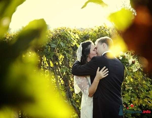 Фото 125583 в коллекции weddings - Невеста01