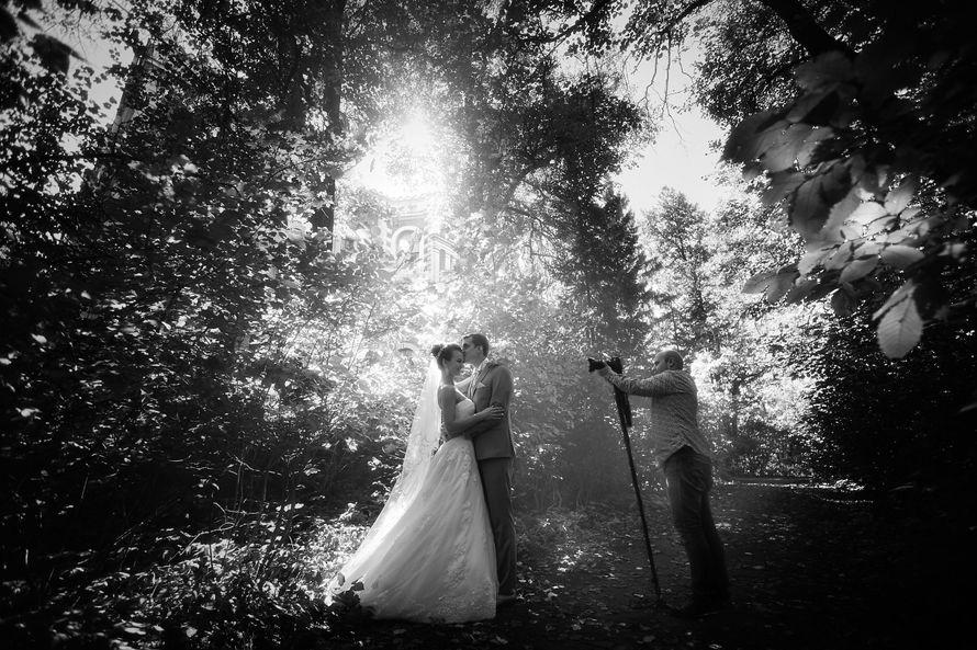 Фото 13626286 в коллекции Портфолио - Family Tree студия свадебной видеографии