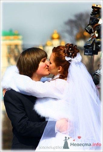 Фото 16087 в коллекции Свадебные Фото - Студия Творческой Фотографии