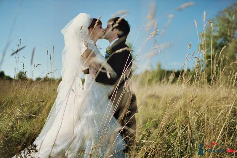 Фото 85128 в коллекции Наша счастливая свадьба - Хлоя
