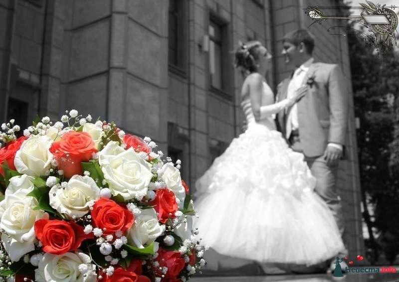 """Фото 126251 в коллекции Свадьба - Студия """"Шедевр"""""""