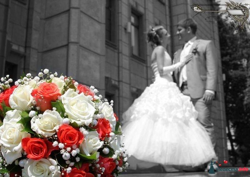 Фото 126251 в коллекции Свадьба