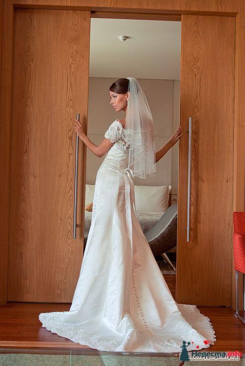 Фото 127529 в коллекции Свадьбы - Свадебный фотограф Трейго Любовь