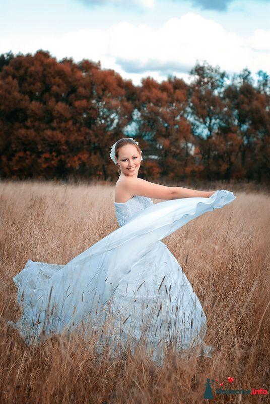 Фото 127535 в коллекции Свадьбы - Свадебный фотограф Трейго Любовь