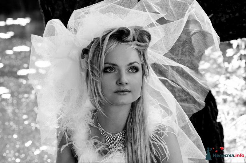 Фото 127223 в коллекции Свадебное портфолио - Анна Калашникова