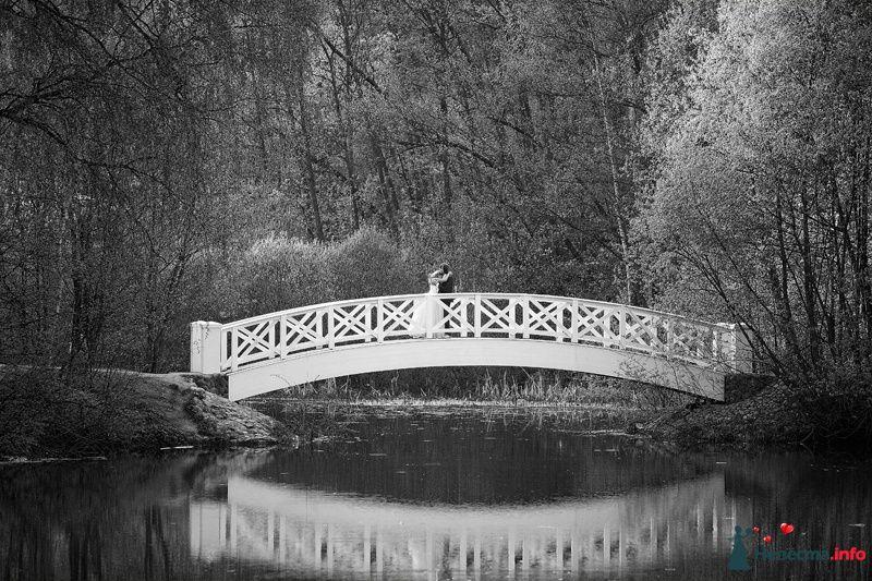 Фото 130834 в коллекции Портфолио - Фотограф Максим Кашляев
