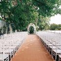 Бежевая ковровая дорожка для оформления свадьбы