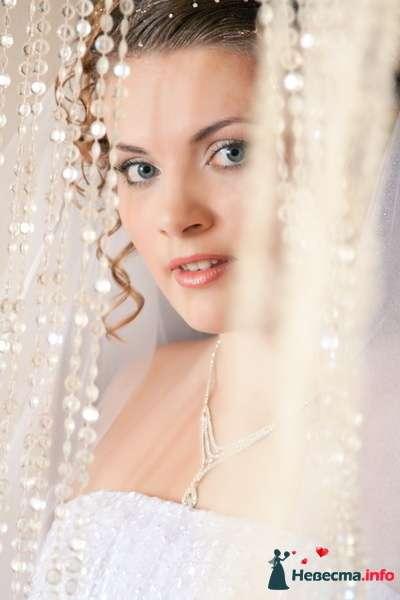 Фото 129571 в коллекции Свадебная фотография от photoAMplua - photoAMplua
