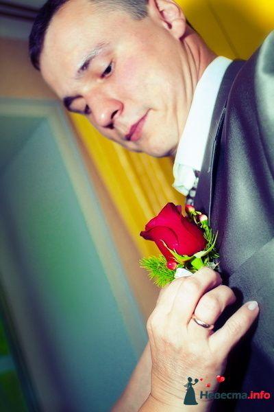 Фото 129582 в коллекции Свадебная фотография от photoAMplua - photoAMplua