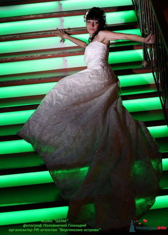 Фото 130309 в коллекции Свадьба - Полевничий Геннадий