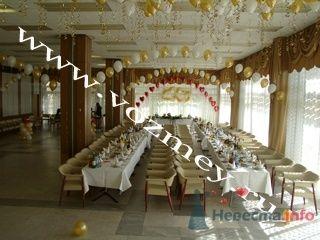 Оформление залов воздушными шарами - фото 11308 Воздушный Змей - оформление шарами