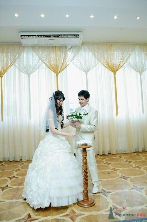 Фото 40091 в коллекции Wedding by Svetlana Alexseeva - Rainbow