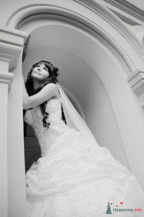 Фото 40102 в коллекции Wedding by Svetlana Alexseeva - Rainbow