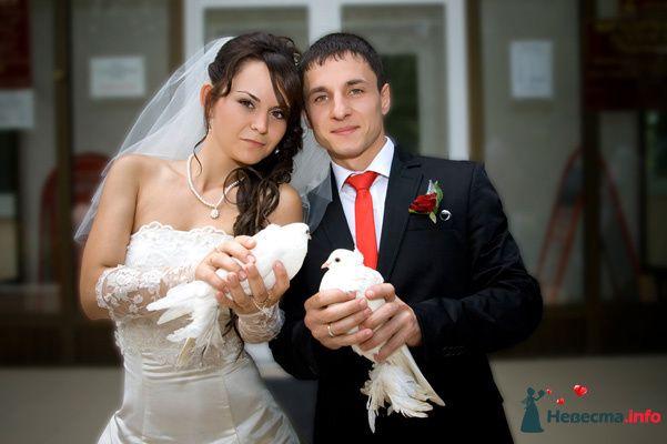 Фото 131023 в коллекции Момент - Свадебный фотограф - Александра-Ал