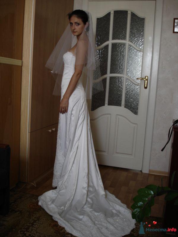 Фото 131258 в коллекции Мои фотографии - vera85