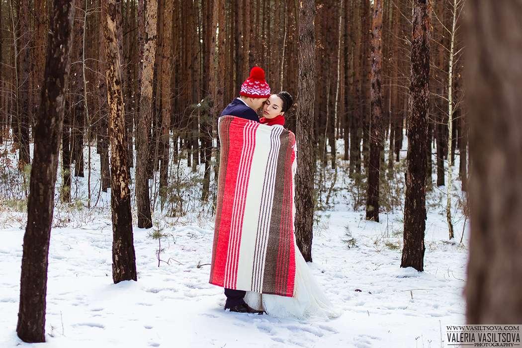 Фото 4850115 в коллекции Портфолио - Фотограф Валерия Васильцова