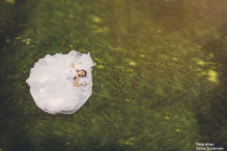 """Фото 1885345 в коллекции Мои фотографии - """"ShowRoom"""" - свадебная видеография"""