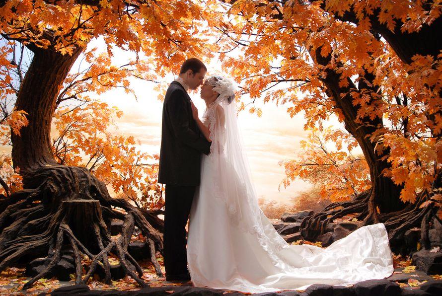 """Фото 13159040 в коллекции Портфолио - """"ShowRoom"""" - свадебная видеография"""