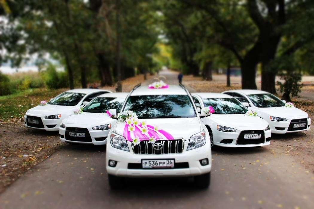 Фото 3598921 в коллекции Наши автомобили на свадьбу - TransElite - элитный трансфер