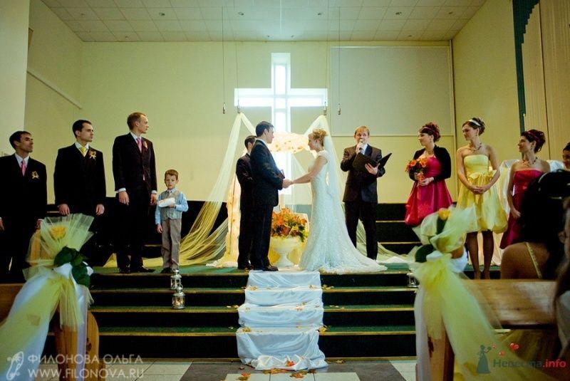 Фото 65548 в коллекции Свадьба Кристофера и Марины - Фотограф Филонова Ольга