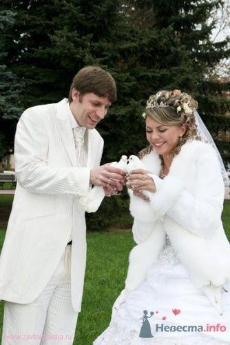 "Голуби - фото 12940 Свадебный центр ""Елена"" - видеоуслуги"
