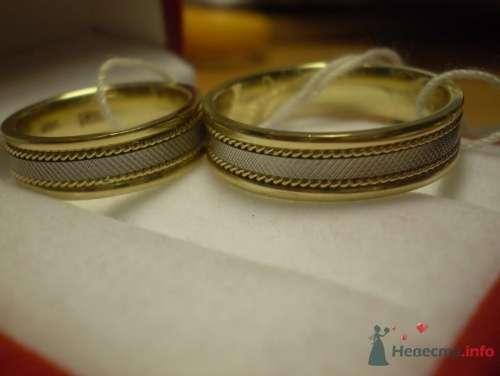 наши колечки - фото 14790 Невеста01