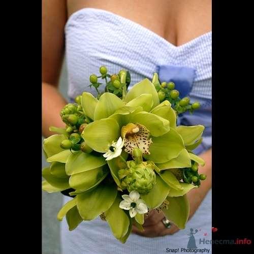 Фото 20060 в коллекции к свадьбе - Невеста01