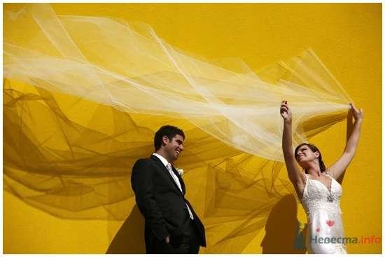 Фото 55016 в коллекции к свадьбе - Невеста01