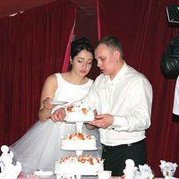 Видеосъёмка свадеб,видеограф на свадьбу,видеооператор в Омске.