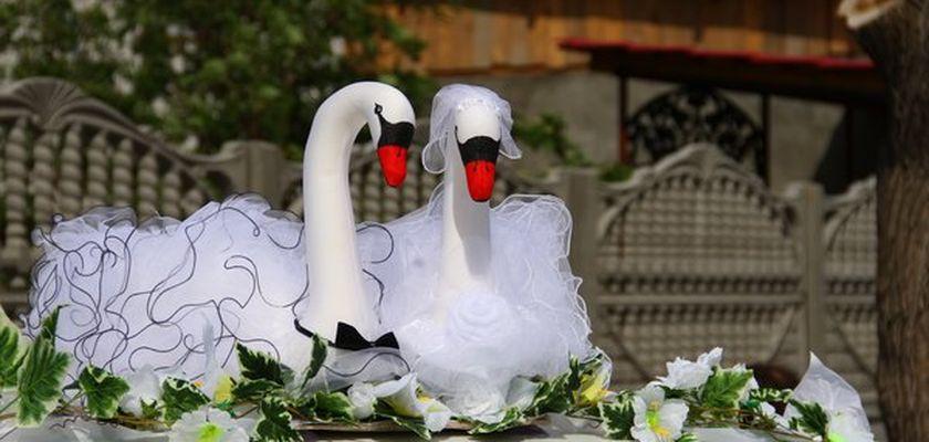 Лебеди для машины