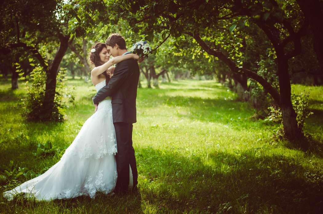 Свадьба Летом - фото 2669983 Фотограф Апальков Вячеслав