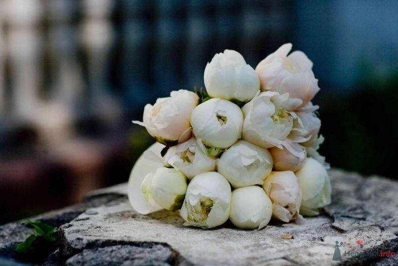 Фото 27759 в коллекции Мои фотографии - ЛюбовьК