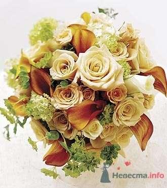 Фото 19770 в коллекции Букет невесты и бутоньерка - Невеста01