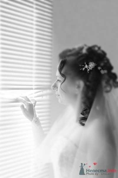 Фото 44353 в коллекции Мои работы  - Невеста01