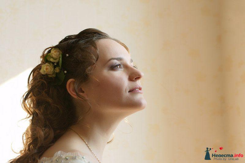 Фото 102442 в коллекции Мои работы  - Невеста01