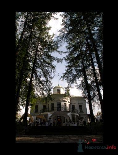 """Фото 12595 в коллекции Мои фотографии - Агентство """"Most"""" - организация свадеб"""