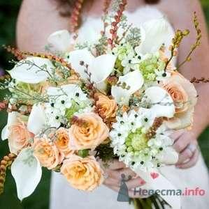 """Фото 15259 в коллекции Мои фотографии - Агентство """"Most"""" - организация свадеб"""