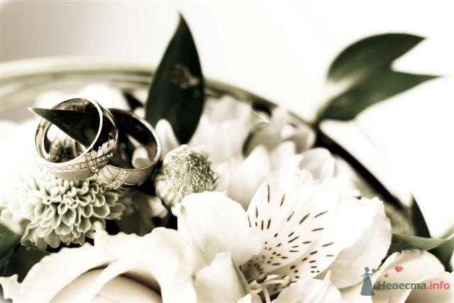 Фото 42230 в коллекции Мои фотографии - Marry