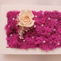 Декор-рамка со стабилизированным мхом и розой