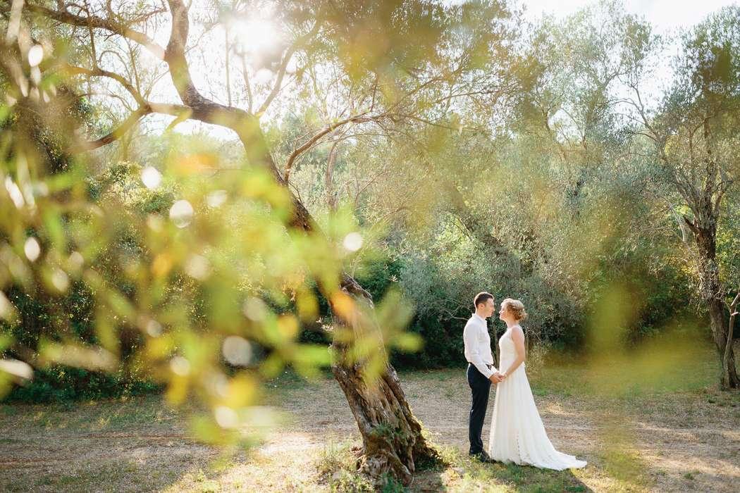 Wedding photoshoot in Montenegro  - фото 18285450 Фотограф Владимир Надточий