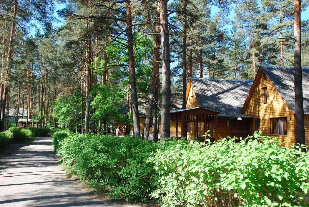 Фото 2321948 в коллекции Улыбышево - База отдыха Улыбышево