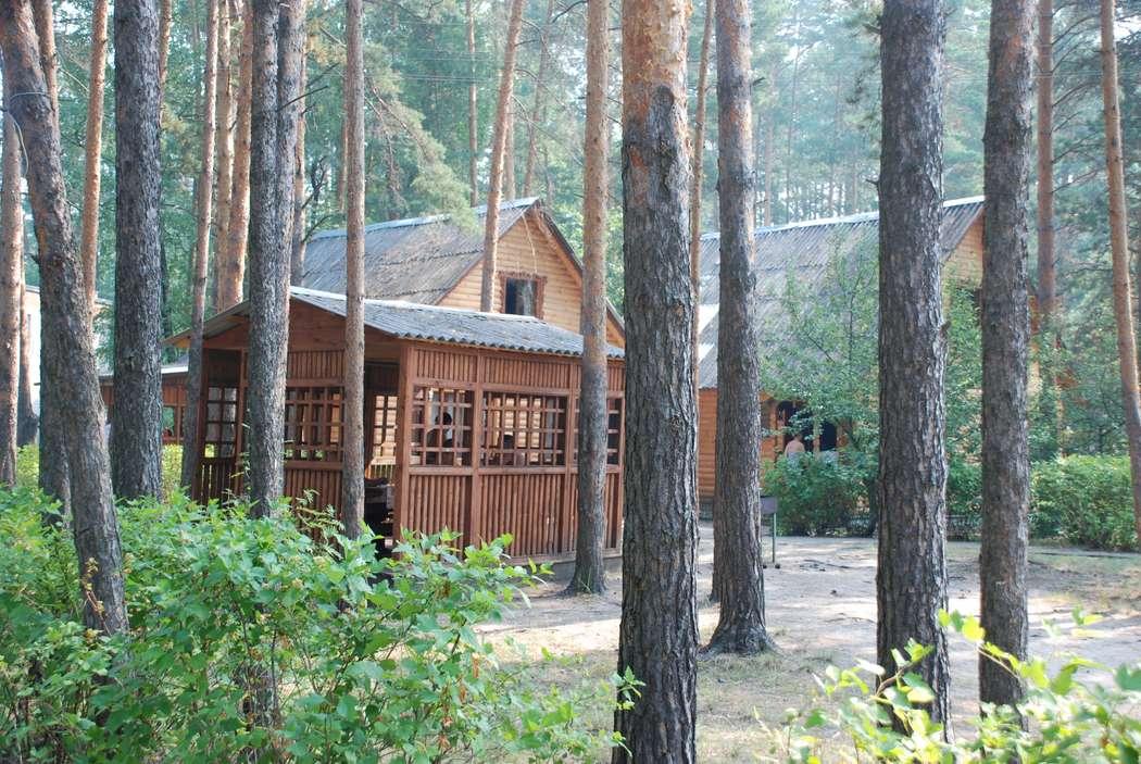 Фото 3194181 в коллекции Улыбышево - База отдыха Улыбышево
