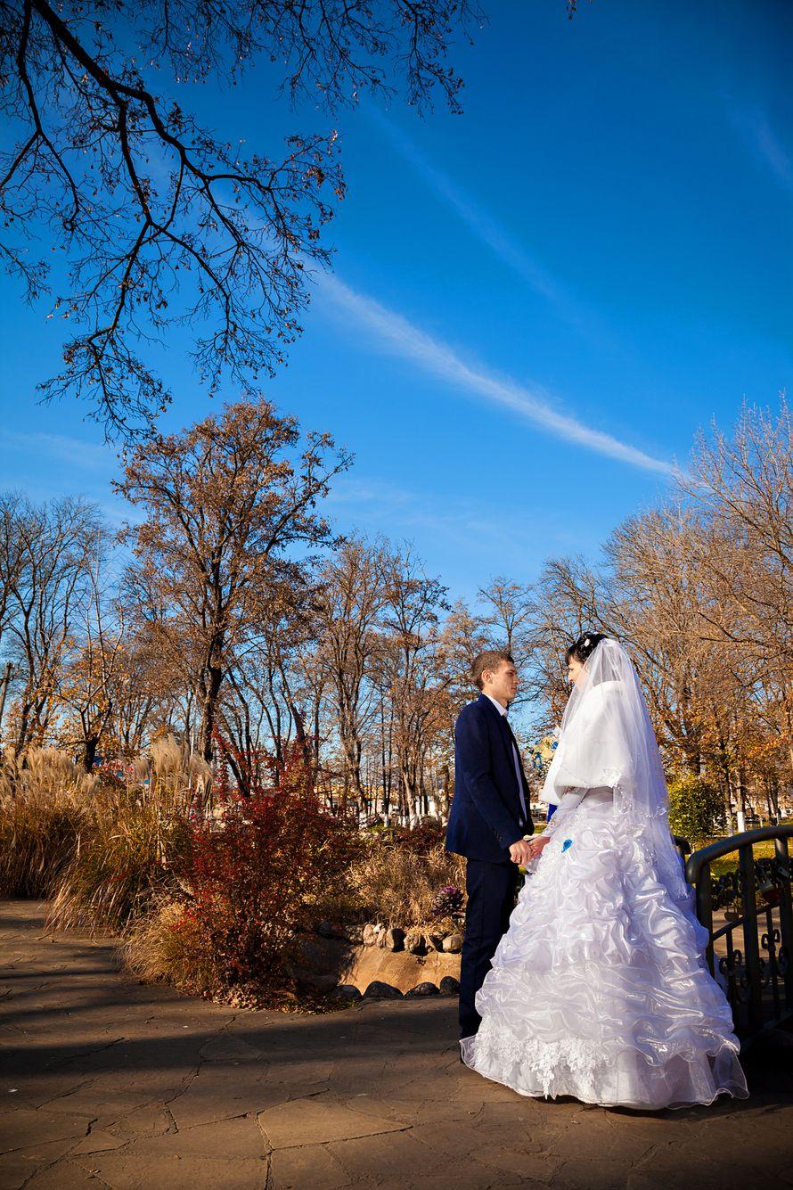 Виктория и Максим - фото 1745641 Елена Sunlight - фотограф